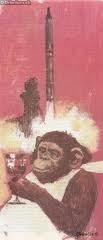 Šimpanz z Mysu Canaveral