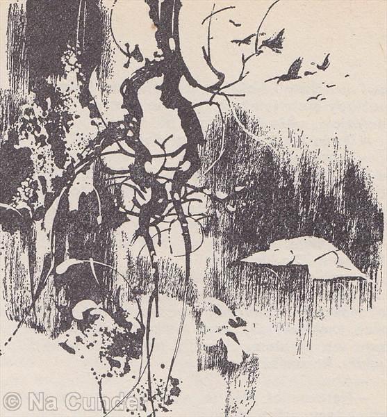 Biely jeleň