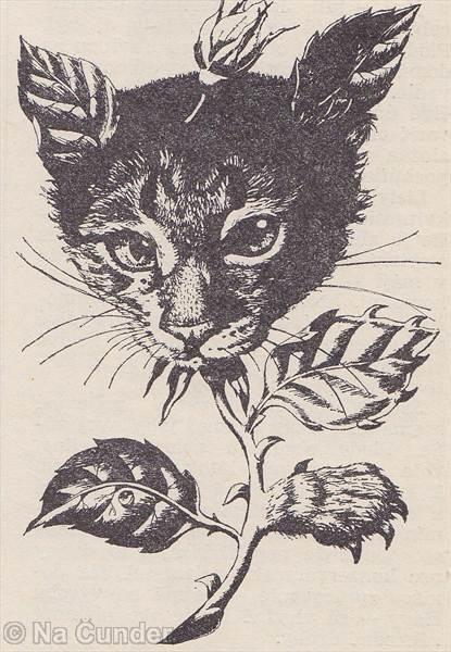 Prvý kríženec zvieraťa a rastliny