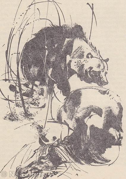 Postriežka na medveďa