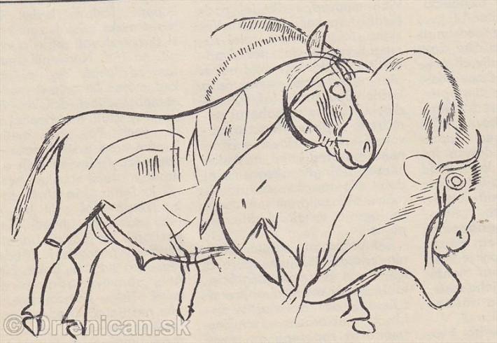 Majú azda zvýraznené oči bizóna a divokého koňa vyjadrovať ich ostražitosť? Kresba pochádza z jaskyne Combarelíe vo Francúzsku.