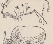 Znaky na týchto bizónoch sa spočiatku pokladali za šípy. Dnes v nich vidíme viac: typické znaky samcov a samíc. Kresba pochádza z jaskyne Niaux (južné Francúzsko). Kresba bizóna v jaskyni Combarelle prekrýva kresbu divokého koňa.